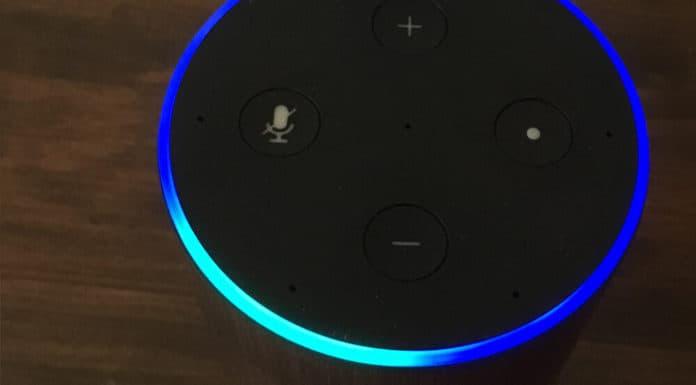 How to Use Amazon Echo in Homeschool